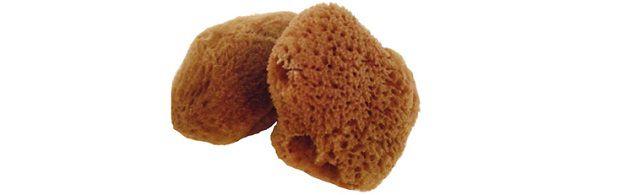 Best Natural Sea Sponge Tampon
