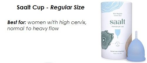 Saalt Cup - Regular Size